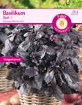 Basilikum Opal | Basilikumsamen von Carl Pabst