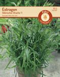 Estragon Sibirischer Drache | Estragonsamen von Carl Pabst