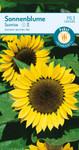 Sonnenblume Sunrise | Sonnenblumensamen von Carl Pabst