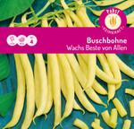 Buschbohne Wachs Beste von Allen | Buschbohnensamen von Carl Pabst