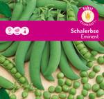 Schalerbse Eminent | Schalerbsensamen von Carl Pabst