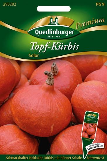 Topf-Kürbis Solor | Hokkaidokürbissamen von Quedlinburger