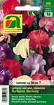 Duftwicke Floribunda Mischung | Duftwickensamen von Austrosaat