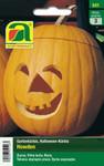 Halloweenkürbis Howden | Halloweenkürbissamen von Austrosaat
