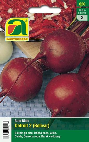 Rote Rübe Detroit 2 (Bolivar) | Rote Beetesamen von Austrosaat