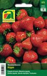 Monatserdbeeren Rügen | Monatserdbeerensamen von Austrosaat