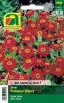 Zinnien Profusion Cherry | Zinniensamen von Austrosaat