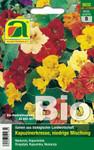 Kapuzinerkresse Niedrige Mischung | Bio-Kapuzinerkressesamen von Austrosaat