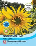 Sonnenblume Astra Gold | Sonnenblumensamen von Thompson & Morgan
