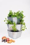 Paul Potato Kartoffelturm Starter Stahl Set (3 Etagen) | Kartoffeltürme von Gusta Garden