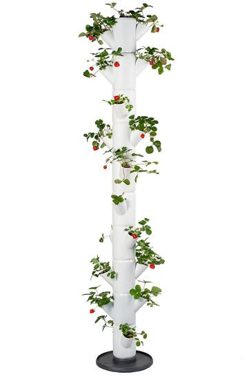 Sissi Strawberry Erdbeerturm infinity weiß (10 Etagen)   Erdbeertürme von Gusta Garden
