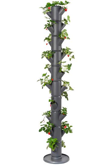 Sissi Strawberry Erdbeerturm infinity anthrazit (10 Etagen) | Erdbeertürme von Gusta Garden