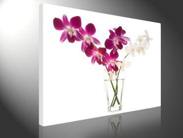 Orchidee im Glas – Bild 1