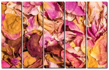 Fleur rose 202014509