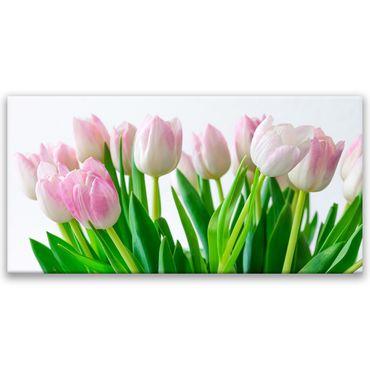 Tulipes 2020145190 – Bild 1
