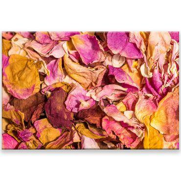 Fleur 2020146903 – Bild 1