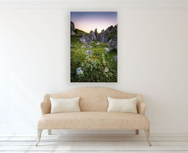Limited Edition Spanien Picos Distel – Bild 2