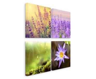 Fleurs 2020158034 – Bild 2