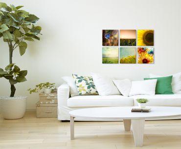 Sonnenblumen 01366 – Bild 3