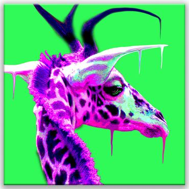 Floating Giraffe – Bild 1
