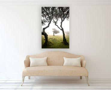 Madère nature 2020159596 – Bild 2