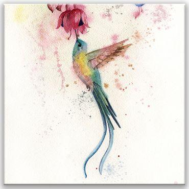 Kolibri 20201615833 – Bild 1