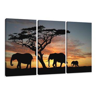 Afrique éléphants - 3001066 – Bild 1