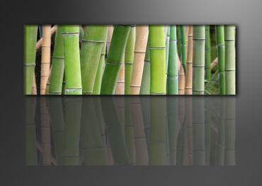 Bambus - 1-teilig – Bild 1