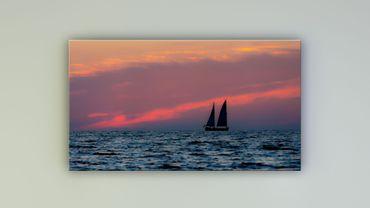 Segelboot Sarasota Florida – Bild 1