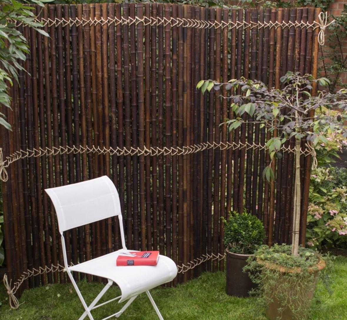 Bambus In Kbeln Als Sichtschutz Cheap Sie Bekommen Bei Uns Im