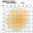 Latex-Applikation Brandzeichen Pentagramm Maße