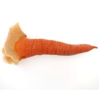 Karotten Nase Latex Applikation koloriert