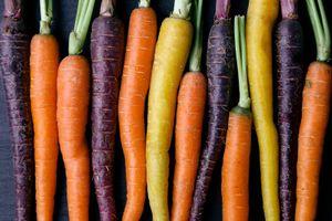 Bunter Karotten Mix - min. 100 Samen