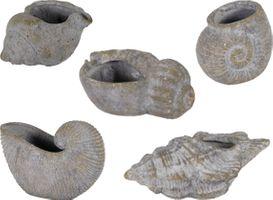 Keramik Pflanzgefäße in Muschelform Bari Shell – Bild 1
