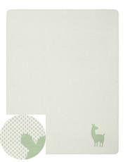 Biederlack Babydecke Alpaca mint 100 x 150 cm aus Baumwollmischung