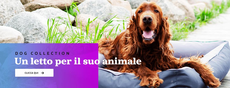 letti cane