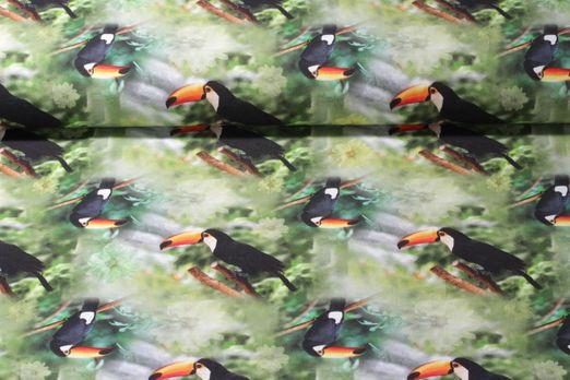Jersey gemustert - Digital Print Toucan Grün Multicolor