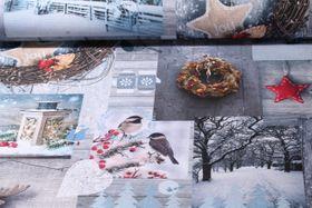 Canvas gemustert - Wintertag Blaugrau Multiclolor