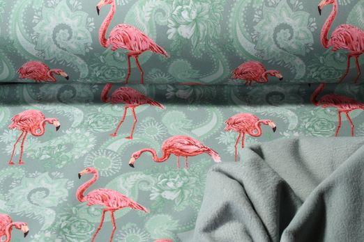 Softshell gemustert - Digital Print Flamingos Dusty Mint Multicolor
