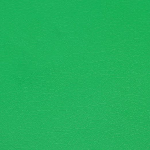 Kunstleder Colour - Grasgrün