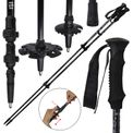 Telescope Poles MOTION 2.0 Carbon Trekking Pole with Clamping Lock by BB Sport