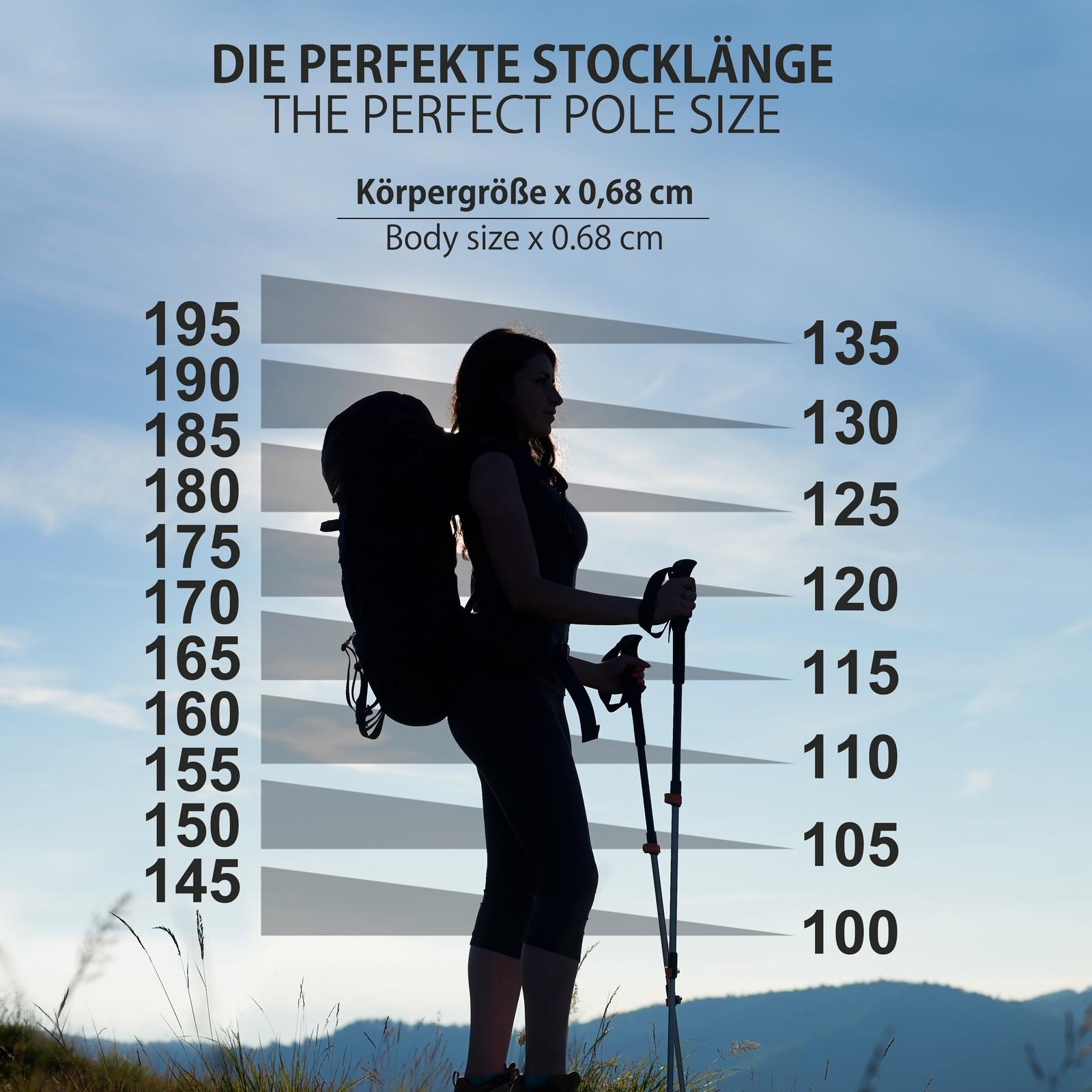 Nordic Walking Stöcke Fixlängenstock Aus Carbon In Verschiedenen