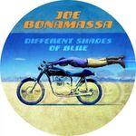 JOE BONAMASSA - DIFFERENT SHADES OF BLUE LIMITED PICTURE VINYL LP NEU