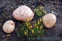 3er Set Gartenstein Polyresin Leuchtsteine Steinskulptur beleuchtet Dekoleuchte 001