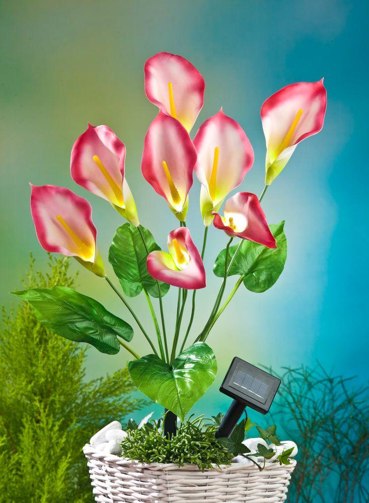 LED Solar-Kunstblume Calla rot 63cm Lilie Kunstpflanze Terrassendeko Balkondeko – Bild 1