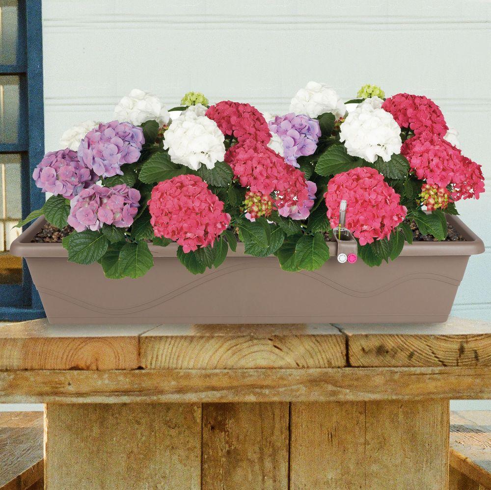 Blumenkasten taupe 79cm mit Bewässerung Balkonkasten Pflanzkasten Blumentopf – Bild 1