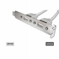 DIGITUS 2-Port USB Slotblech mit Kabel 2 X USB A F, 2 X 5 Pin IDC 0,25 M, 2x4-adrig - 0,3 m