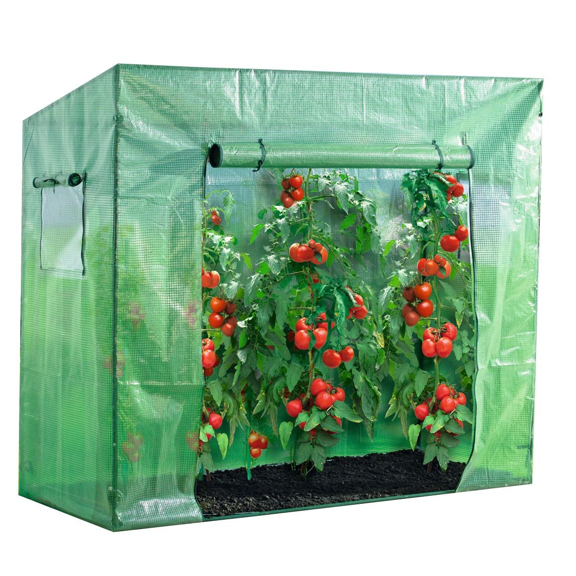 powertec garden tomaten gew chshaus ebay. Black Bedroom Furniture Sets. Home Design Ideas