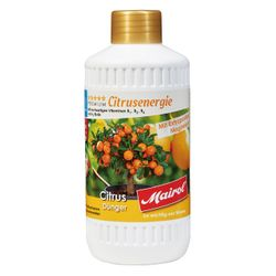 MAIROL Premium Citrus Dünger Citrusenergie Liquid, 500 ml