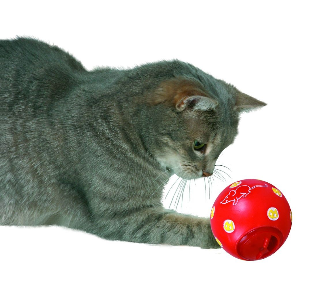 Trixie Cat Activity Snackball | 7cm Durchmesser
